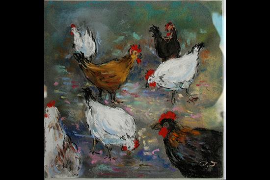 poules didier2